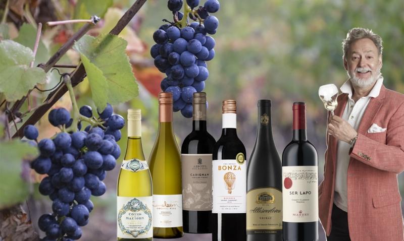 Vin+i+sk%C3%B6rdetid