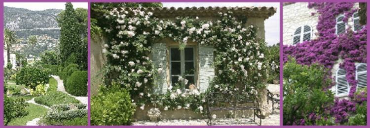 Grönskande trädgårdar runt Nice