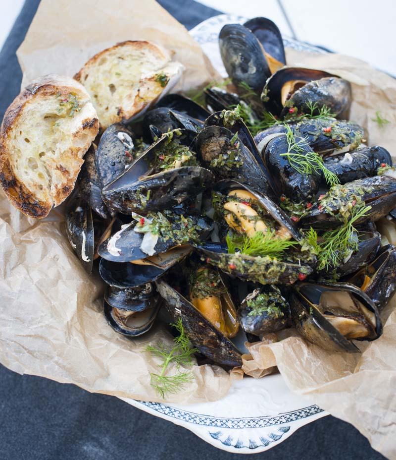 Grillade musslor med fänkål och gremolata