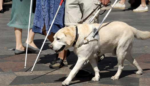 Bli funktionshindrad på äldre dagar innan 65 årsdagen