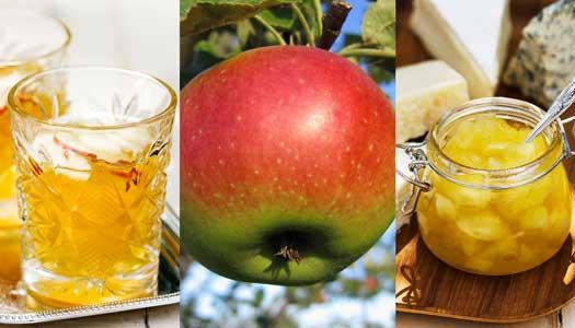 Laga gott med äpplen