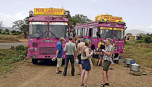 Kenya, Tanzania och Zanzibar: Ta en rosa buss till savannen