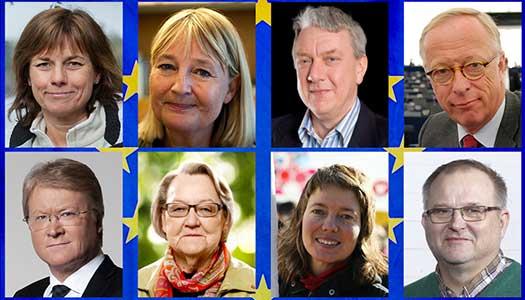 Två frågor inför EU-valet