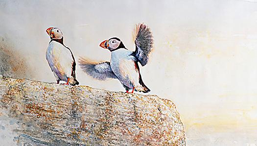 Fågelutställning i Umeå
