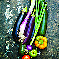 Ratatouille  på  färska  grönsaker
