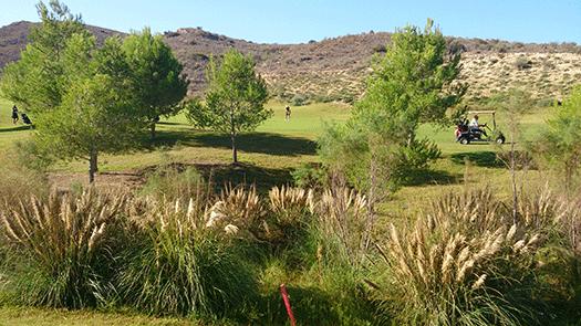 SPF Värmlands golfresa till Bonalba i Alicante