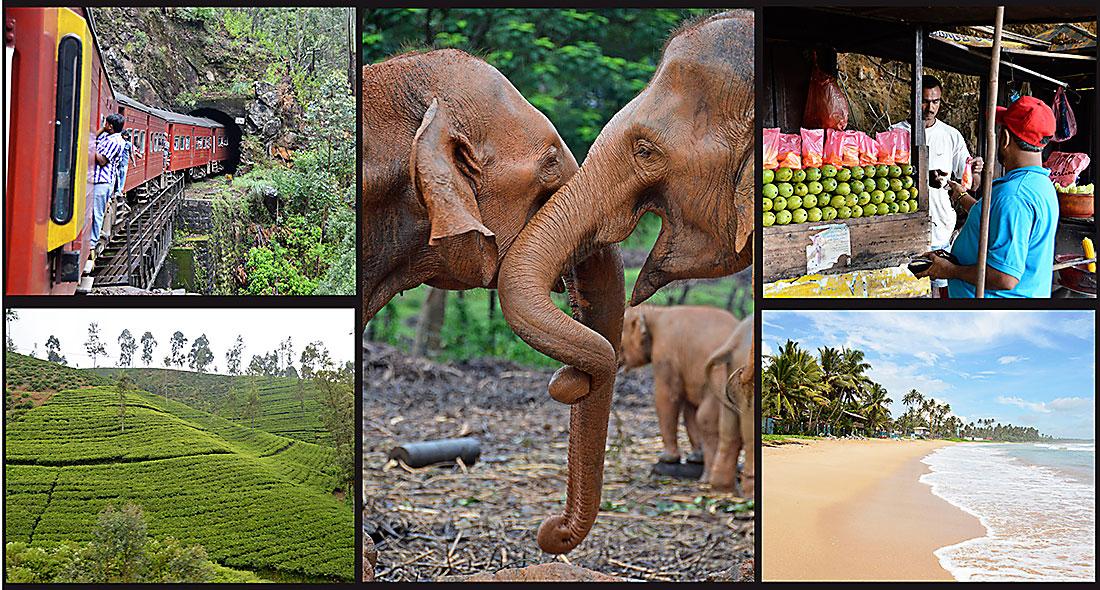 Mot äventyret i Sri Lanka