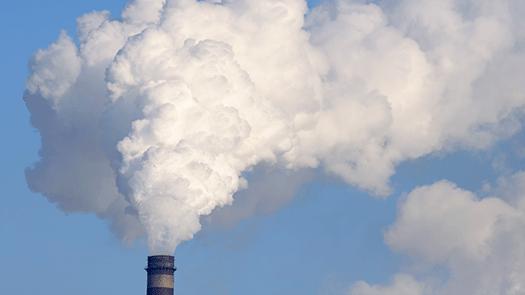 Vi är så dåliga på att bekämpa miljöhoten