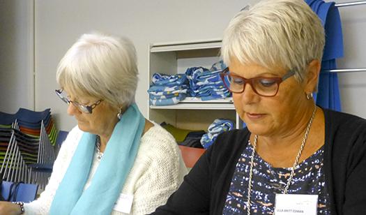 Ögats sjukdomar ämne för synombud i Skaraborg