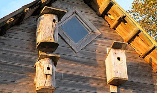 Faluns spa-resa till Estland