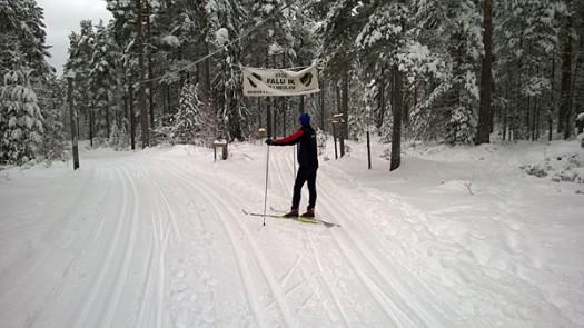 Årets första skidåkning i Falun