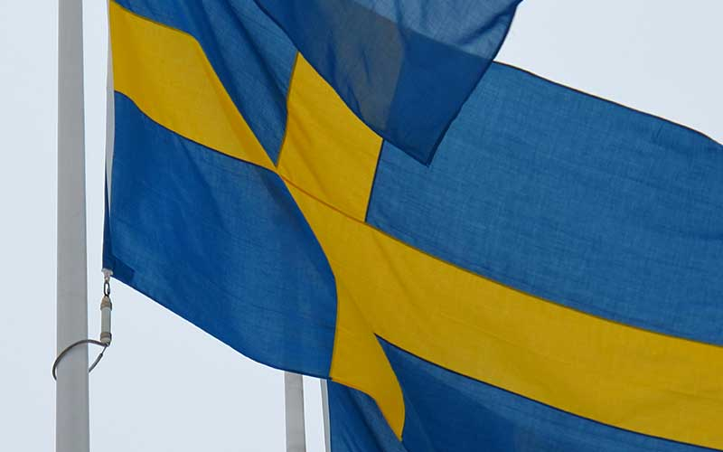 Sverige kan bli sex regioner