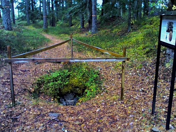 SPF Seniorerna Faluns skogsvandringar avslutade för hösten