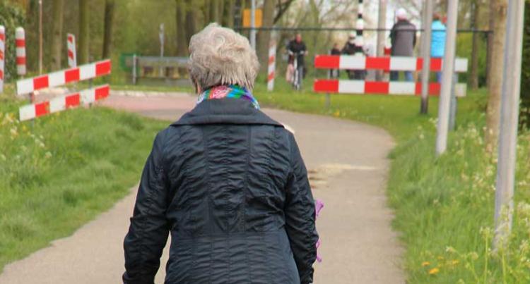 Grundskydd för fattigpensionärer kan stärkas 2018