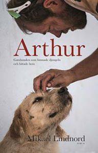 arthur, lindnord