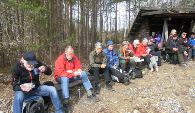 Vårpremiär med rekorddeltagande för skogsvandring