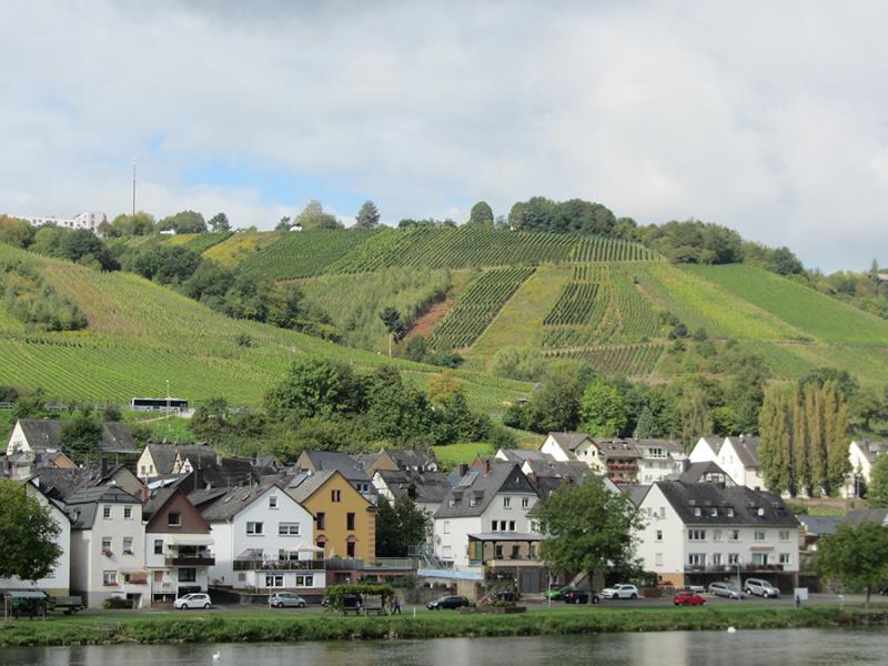 Falun reste till Champagne, Moseldalen och Pfalz