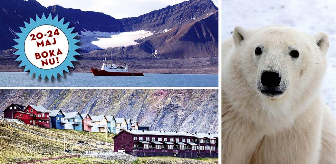 Favorit i repris! Svalbard – Spetsbergen de luxe