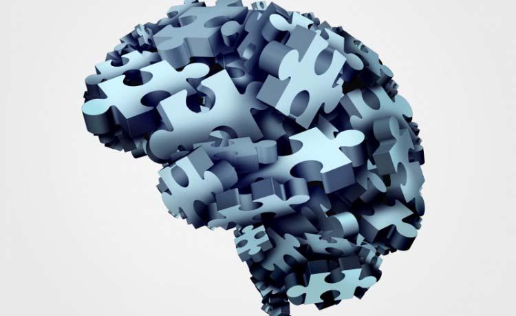 Äldre hjärnor orkar längre – men tappar snabbare