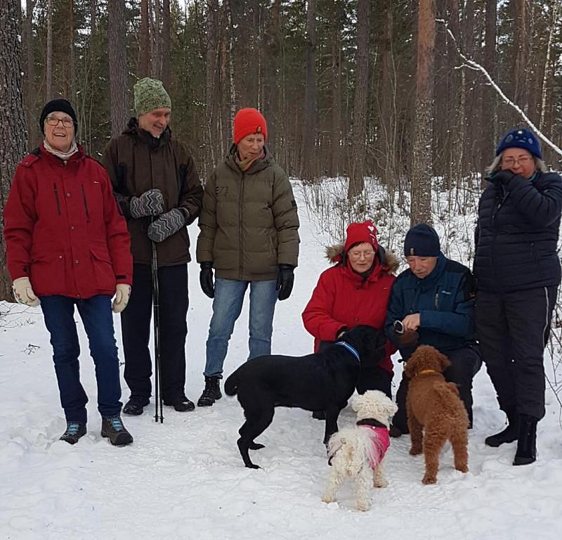 Skidåkning och vintervandring