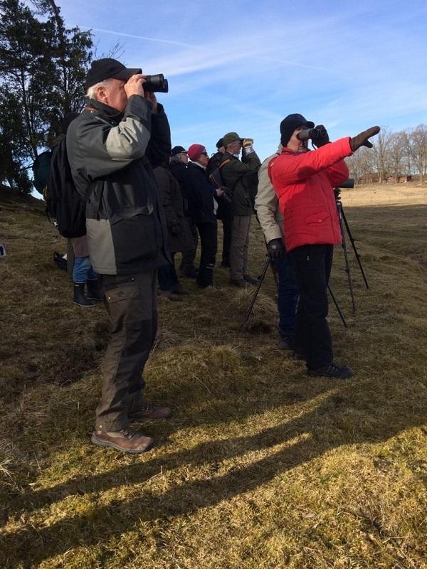 SPF Seniorerna Kiladalen. Vi har fågelskådat vid Skåra sjön i Stigtomta.