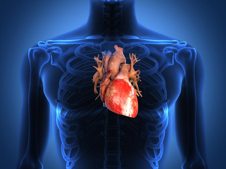 Kan orgasm vara farligt för hjärtat?