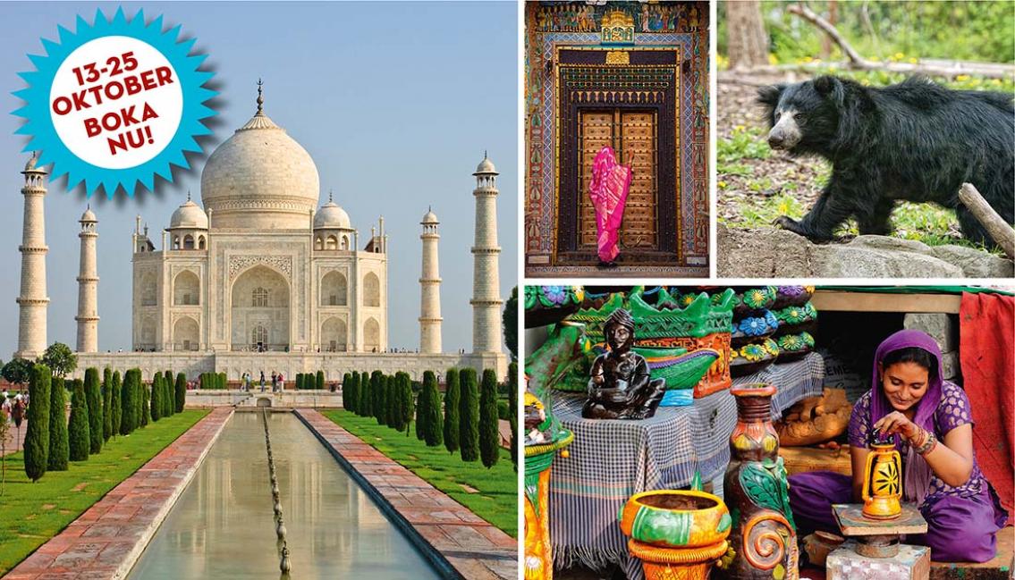 Indien från insidan