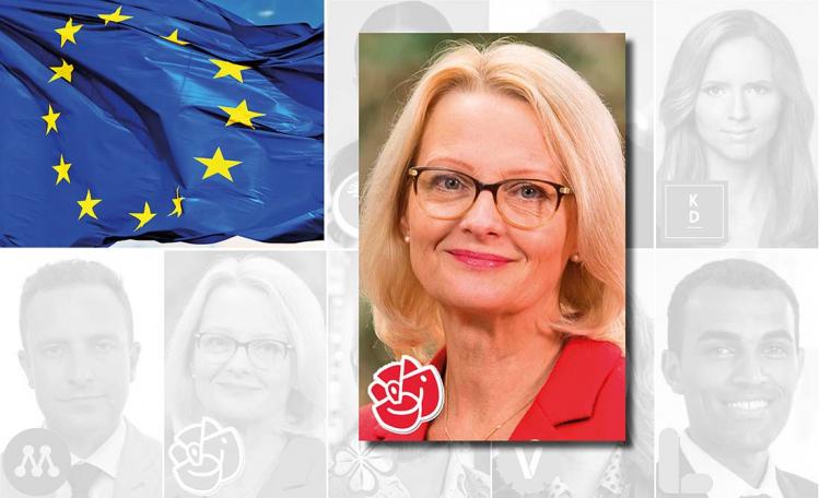 Sveriges EU-lag: Ungt och oerfaret