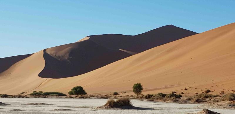 Den storslagna Namiböknen