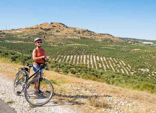 På cykel bland olivträden