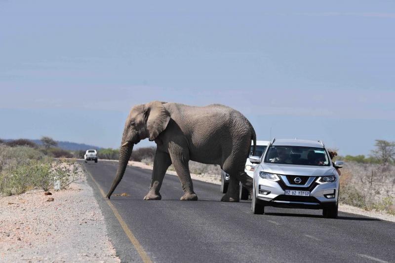 Trafiken på vägarna