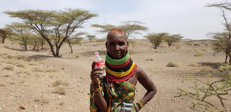 Turkanasjön