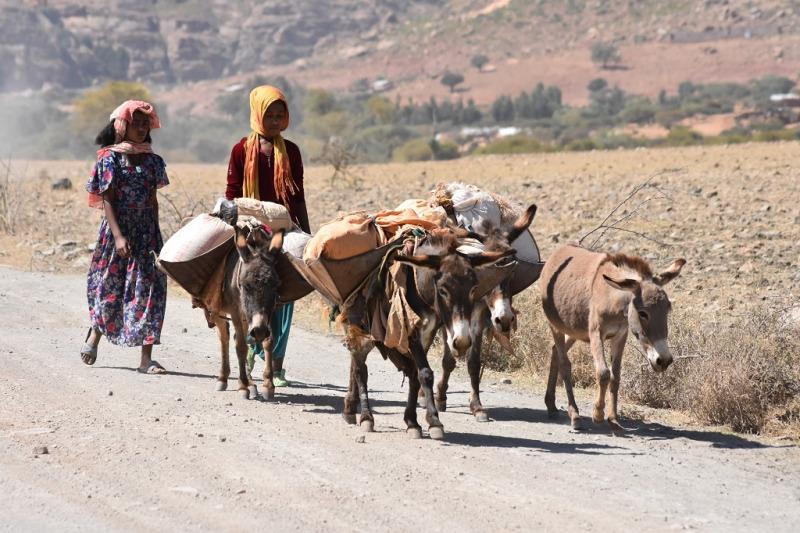 Gränstrakterna mot Eritrea, provinsen Tigray