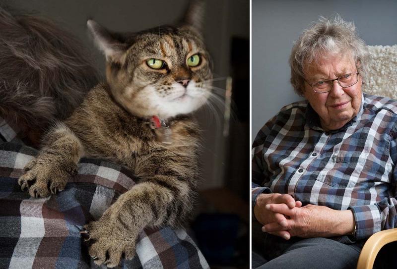 En gubbe och hans katt