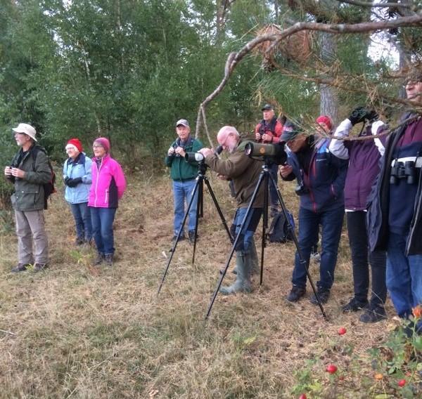SPF Seniorerna Kiladalen har varit vid Skåra sjön där vi sett och hört flyttfåglarna.