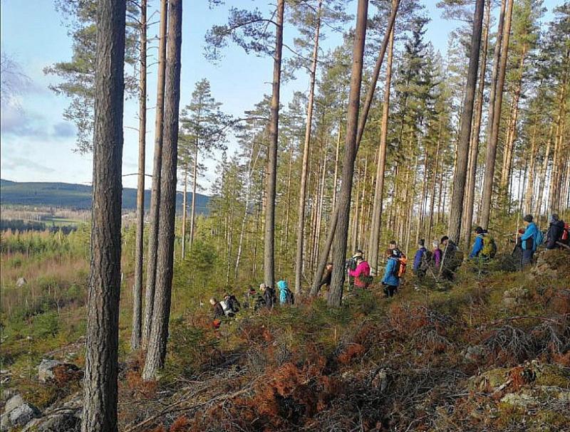 Coronasäkrad långvandring hos SPF Seniorerna Falun – 106 vandrare!