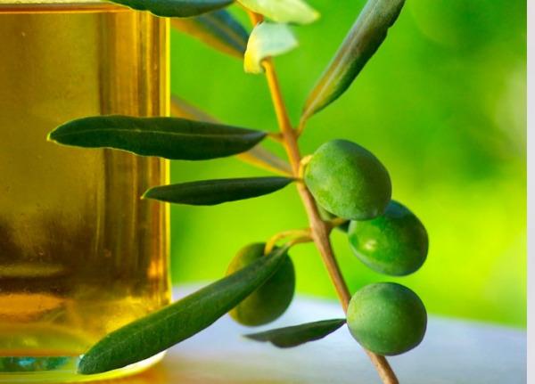 Funkar olivolja?