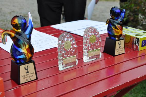 SPF Seniorerna Faluns föreningsmästerskap i golf